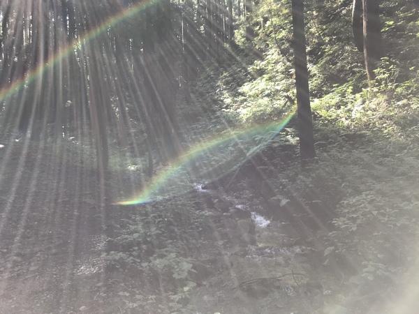 特別な夏至の日は UFOを求めてとんがり山へ♪